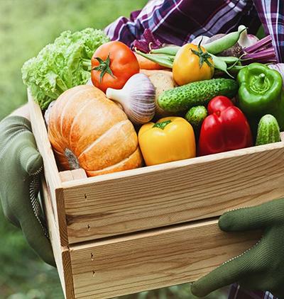 Damien Varache – Vente de fruits et légumes